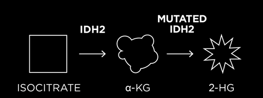 mutated idh2 enzyme